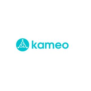 Kameo företagslån